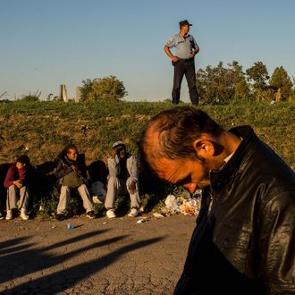 Migrants Gather on Serbian Border with Croatia