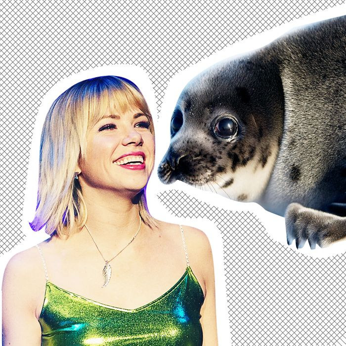 Carly Rae Jepsen and a seal.