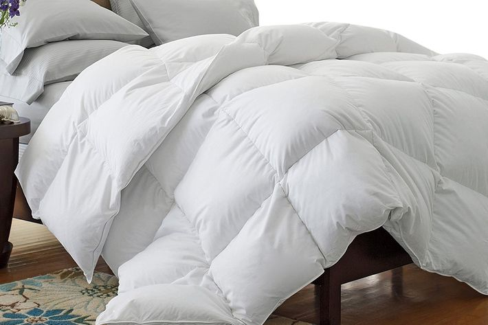 Fantastic 9 Best Down & Alternative Comforters 2018 CN05