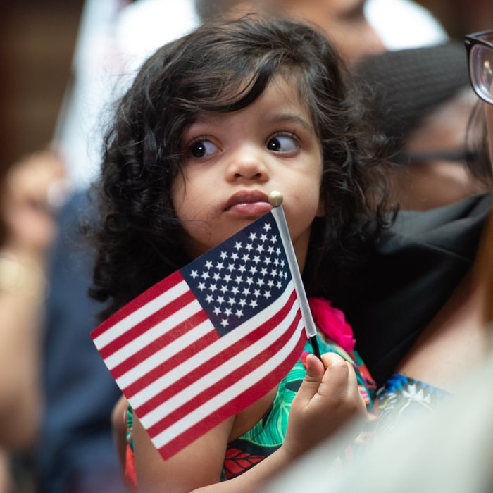Image result for trump against birthright citizenship