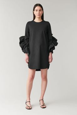 COS Dress with Sleeve Ruffles