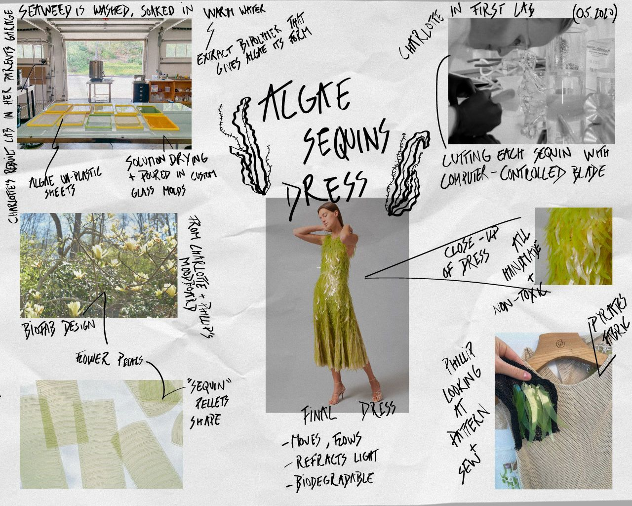 Kangkang Fashion and Fresh Simulation Cabbage Lettuce Umbrella Umbrella Fold Thirty Percent Creative The Sun Umbrella