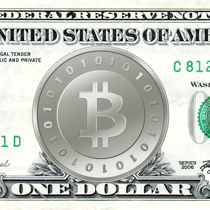 I Bought A Bitcoin How I Joined A Virtual Currency Megabubble -
