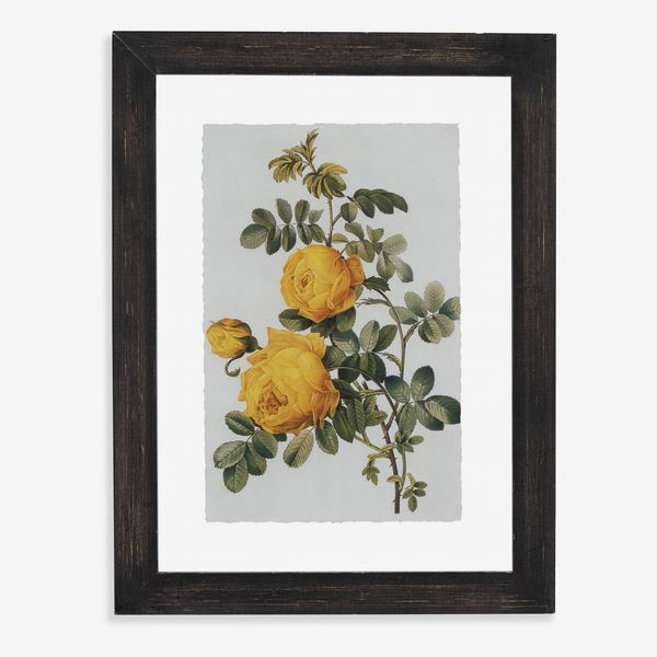 Drew Barrymore Flower Home Vintage Yellow Roses Floating Black II 12