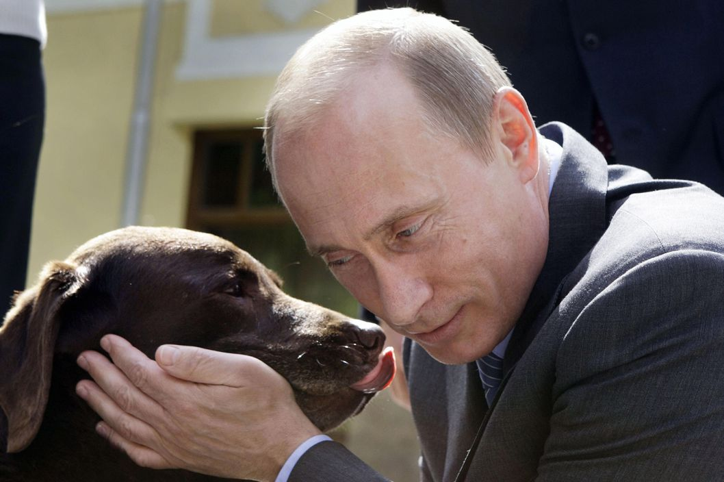 Russian Prime Minister Vladimir Putin pets Labrador Tonik during his meeeting with Russian  rescue workers in the Novo-Ogaryovo residence outside Moscow, Friday, June 6, 2008. Tonik,  legendary rescuer dog of the Emergency Situations Ministry, helped Russian emergency workers save victims of China's devastating earthquake.