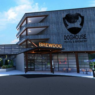 Brewdog Is Bringing A Craft Beer Hotel To America