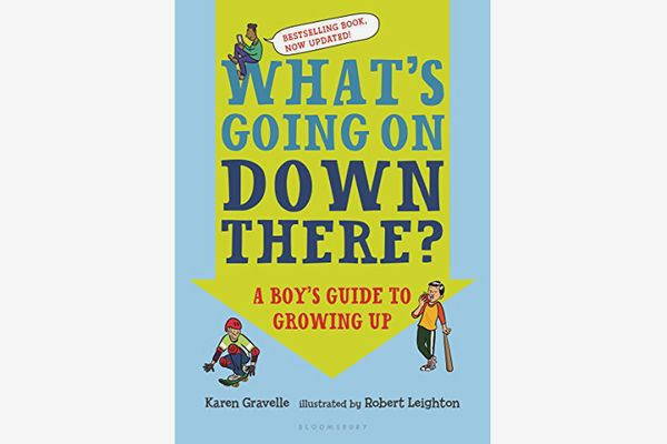 The Boys' Guide to Growing Up, by Phil Wilkinson
