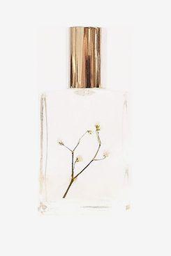 1509 Sophia Fragrance Oil (20 ml)