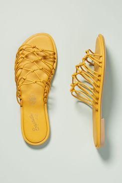 Seychelles Authentic Slide Sandals