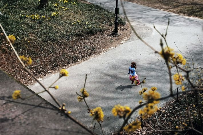 NEW YORK, NY - APRIL 16: A child runs in Manhattan's Central Park on a warm and sunny spring afternoon on April 16, 2015 in New York City. Following one of the coldest and snowiest winters in recent memory, warm temperatures have finally arrived.  (Photo by Spencer Platt/Getty Images)