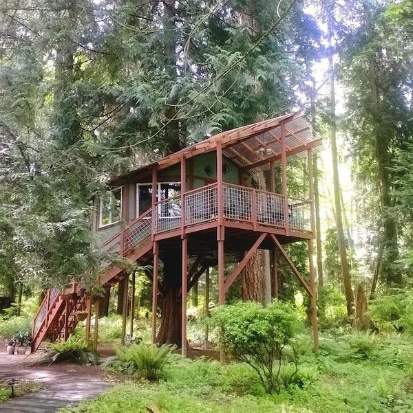 Tree House on Whidbey Island, Washington