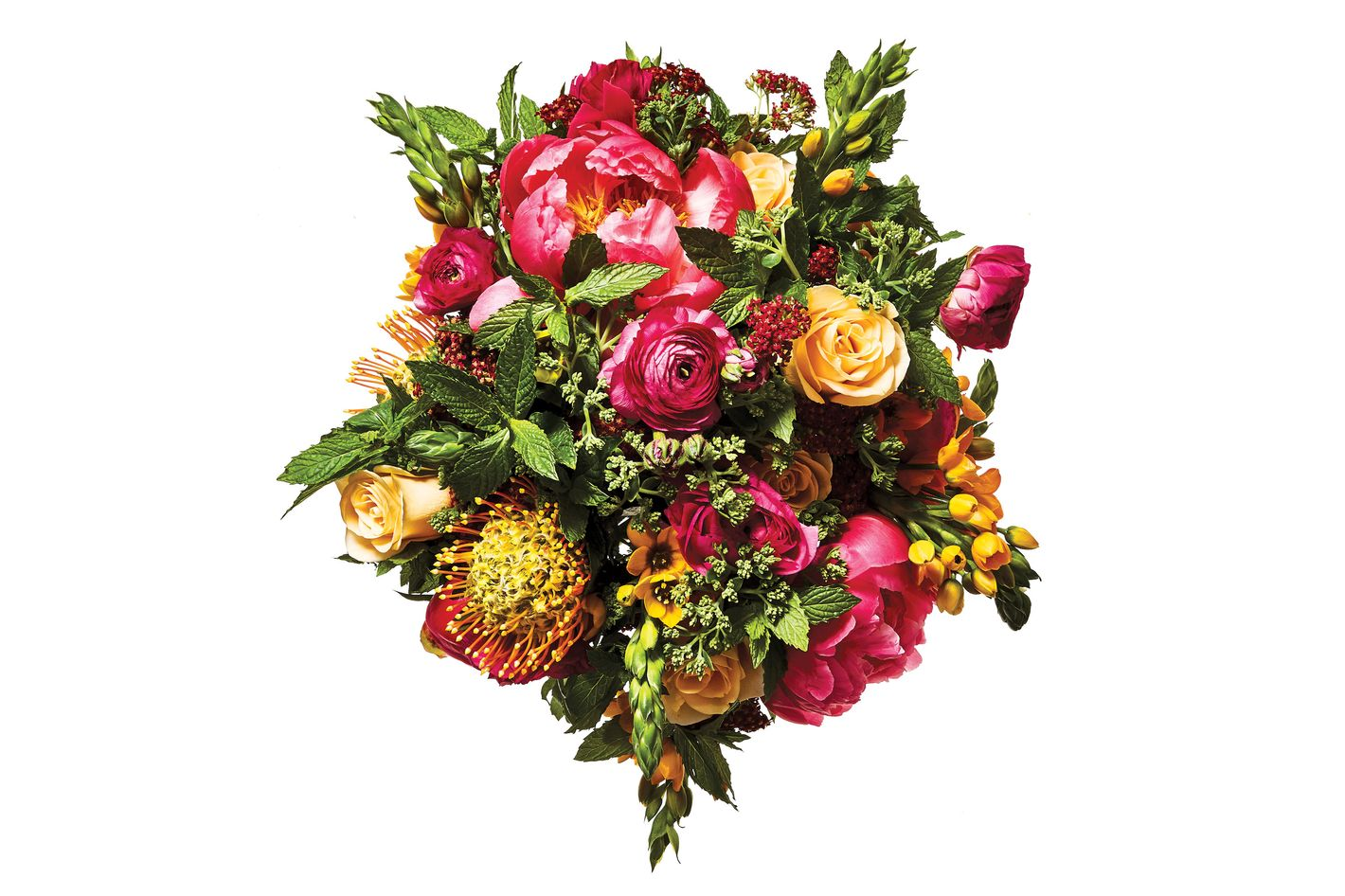 Peony, ranunculus, rose, chinch flower, mint, and pincushion protea