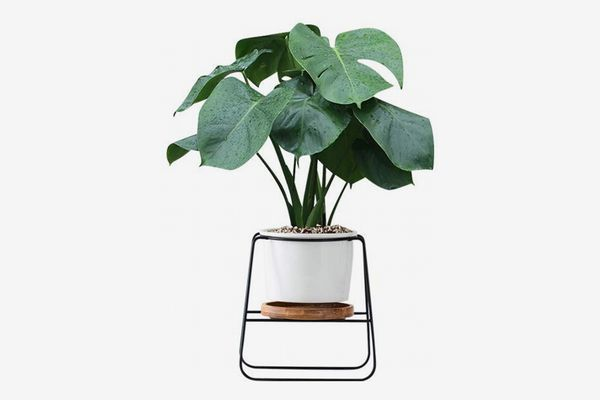 Fieren Outdoor/Indoor Planter