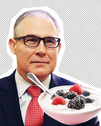 Scott Pruitt, a delicate bowl of yogurt.