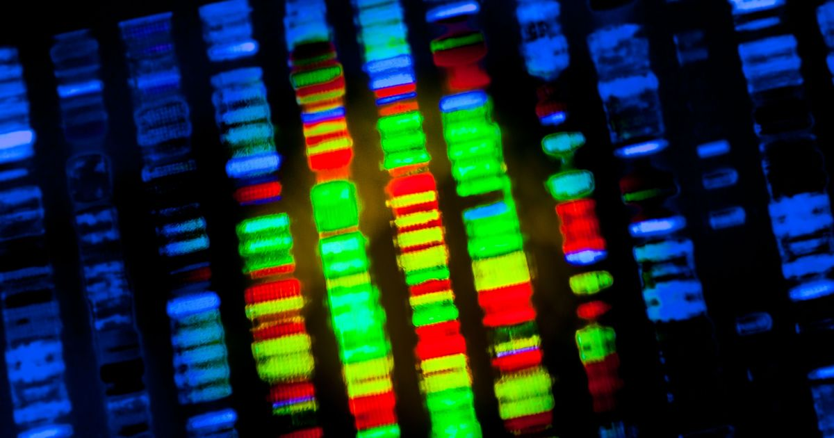 The People Whose Genetic Tests Uncover Mysteries