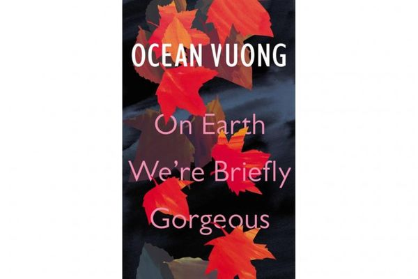 'On Earth We're Briefly Gorgeous' by Ocean Vuong