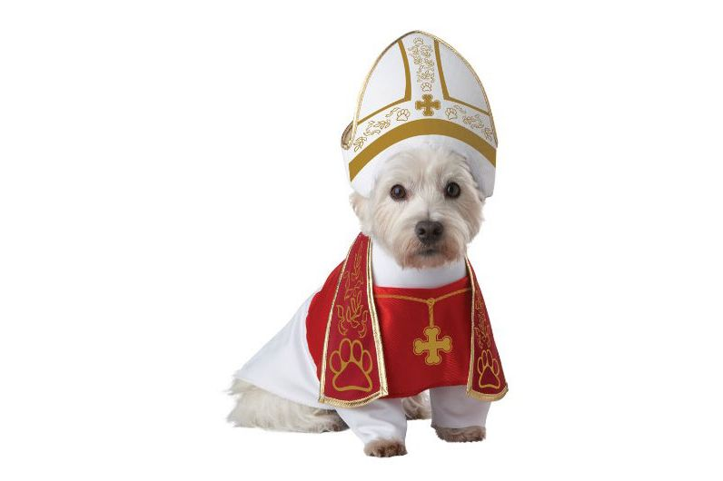best pope dog halloween costume - Dogs With Halloween Costumes On