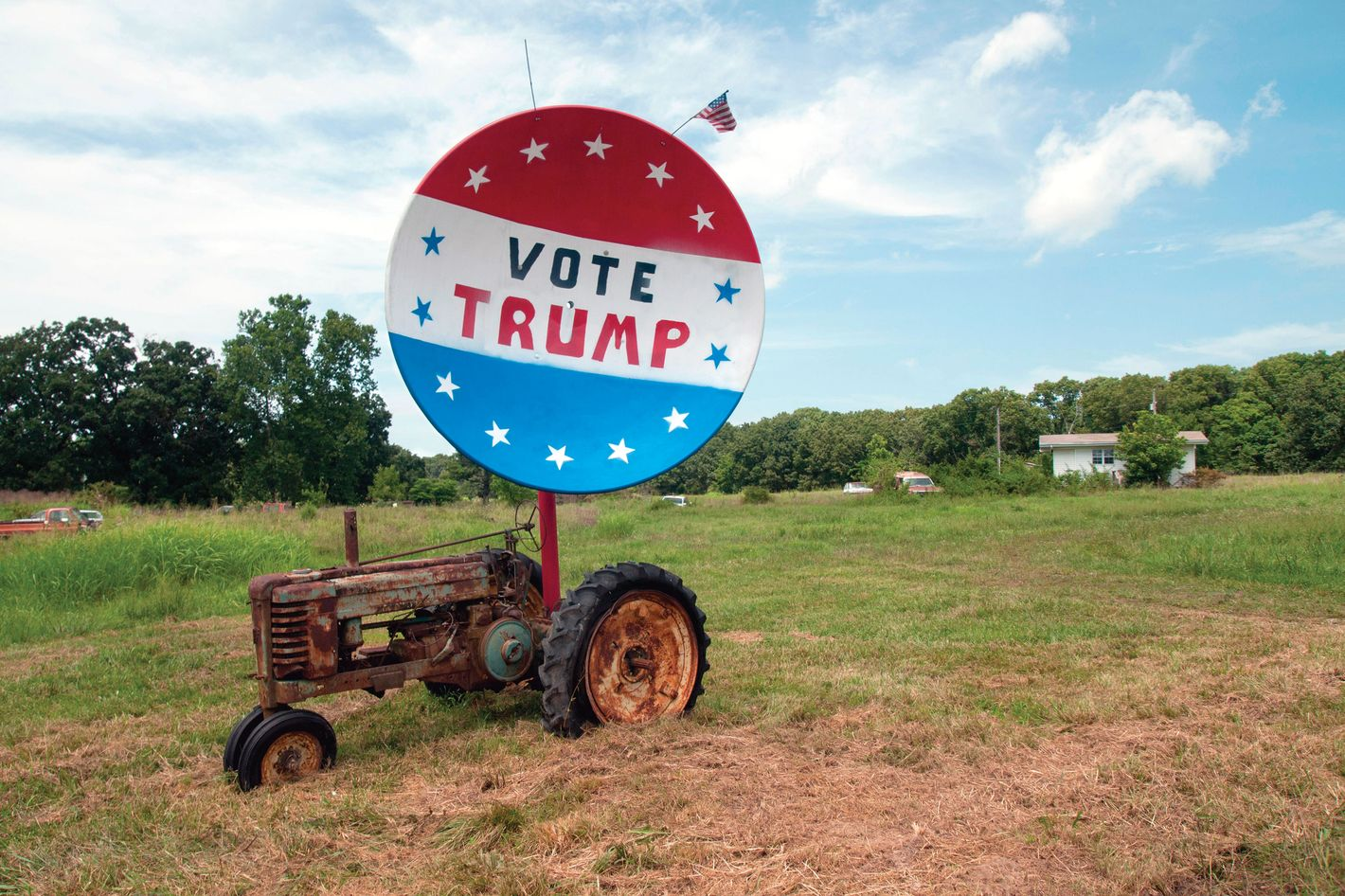 Frank Rich: No Sympathy for the Hillbilly