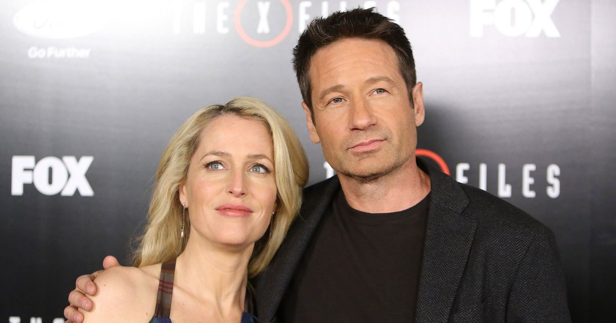 Everything David Duchovny and Gillian Anderson Have Done Since The X-Files Ended