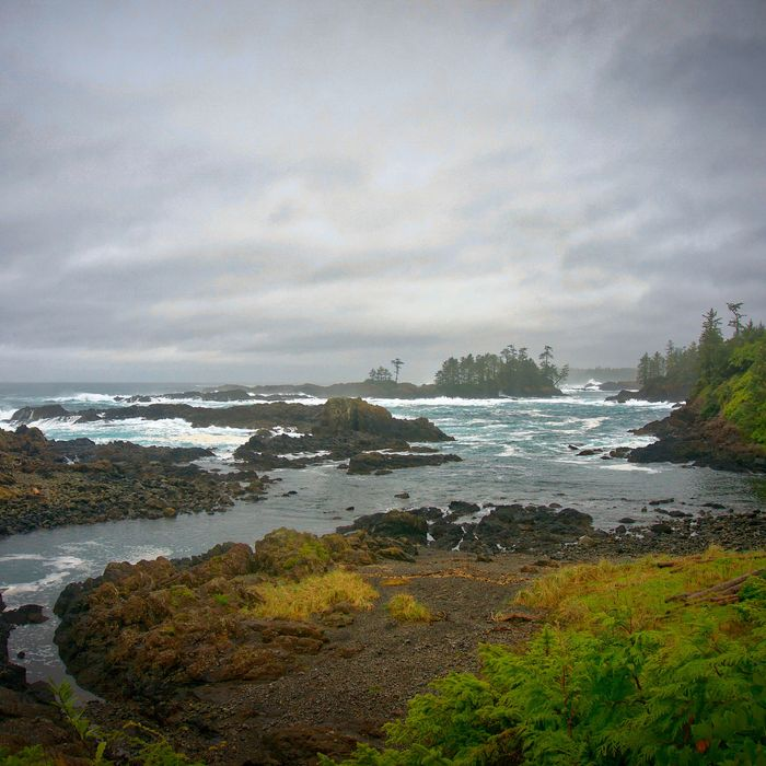 Beaches Vancouver Island: Vancouver Island Is Storm-Watching And Surfing Heaven