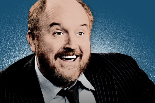 How Louis C K Became A King Of Comedy Vulture