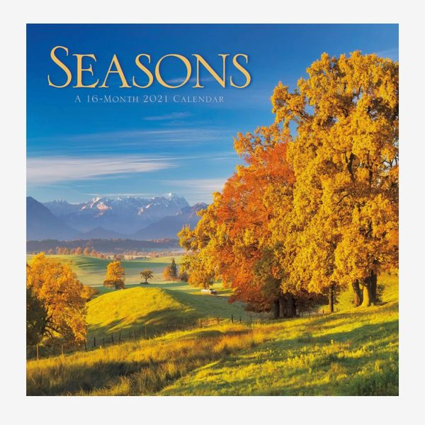 Trends International 2021 Wall Calendar 12-by-12-Inches Seasons