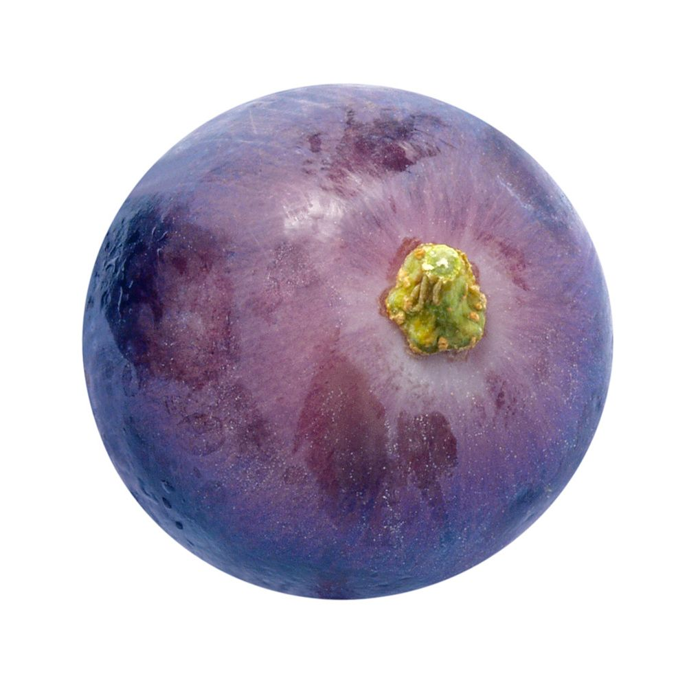 Http Imgarcade Com 1 Single Purple Grape