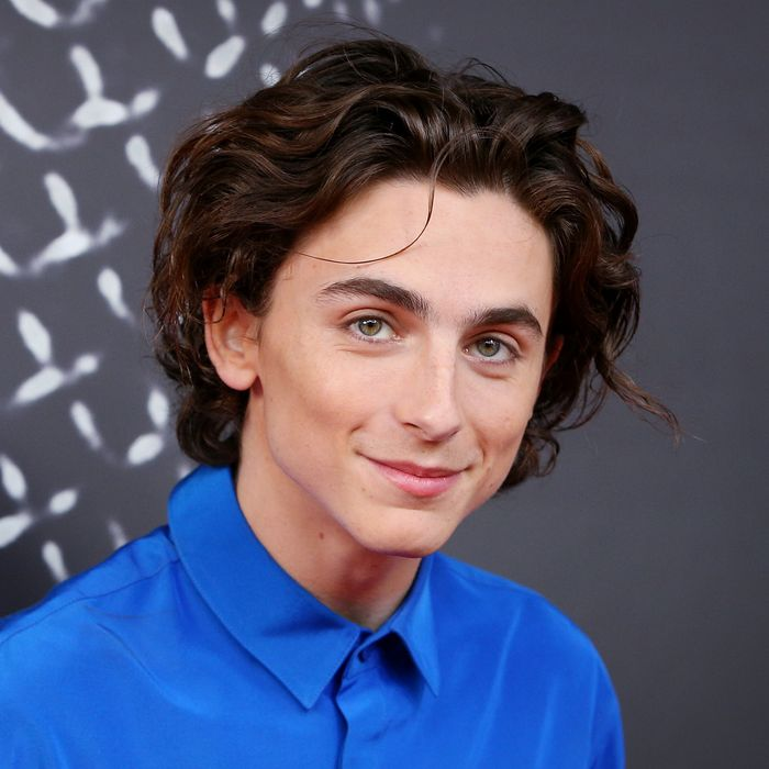 15 Very Good Photos Of Timothee Chalamet S Very Good Hair