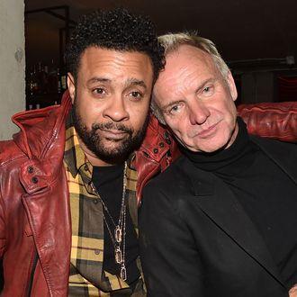 Sting and Shaggy Made a Reggae Album Together
