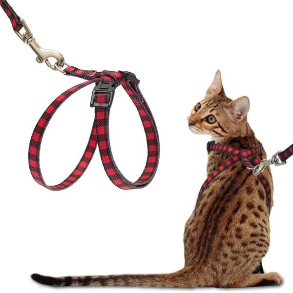 PupTeck Cat Harness with Leash Set