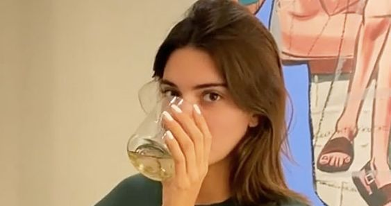 Kendall Jenner Announces Secret Tequila Brand After TikTok Uncovered It - Vulture