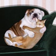 Dog and cat embracing on sofa