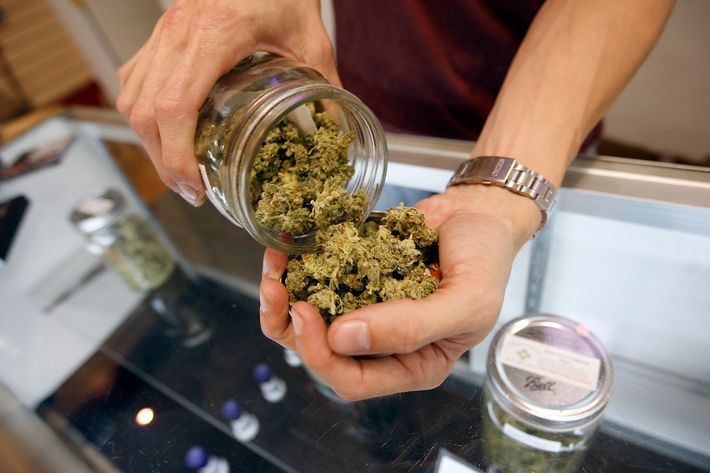 LOS ANGELES, CA - JULY 25:  A budtender pours marijuana from a jar at Perennial Holistic Wellness Center medical marijuana dispensary, which opened in 2006, on July 25, 2012 in Los Angeles, California. The Los Angeles City Council has unanimously voted to ban storefront medical marijuana dispensaries and to order them to close or face legal action. The council also voted to instruct staff to draw up a separate ordinance for consideration in about three months that might allow dispensaries that existed before a 2007 moratorium on new dispensaries to continue to operate. It is estimated that Los Angeles has about one thousand such facilities. The ban does not prevent patients or cooperatives of two or three people to grow their own in small amounts. Californians voted to legalize medical cannabis use in 1996, clashing with federal drug laws. The state Supreme Court is expected to consider ruling on whether cities can regulate and ban dispensaries.    (Photo by David McNew/Getty Images)