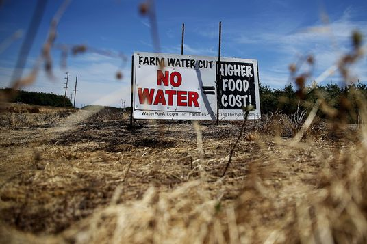 A sign referencing the drought is posted on the side of the road on April 24, 2015 in Firebaugh, California. As California enters its fourth year of severe drought, farmers in the Central Valley are struggling to keep crops watered as wells run dry and government water allocations have been reduced or terminated. Many have opted to leave acres of their fields fallow.  (Photo by Justin Sullivan/Getty Images)