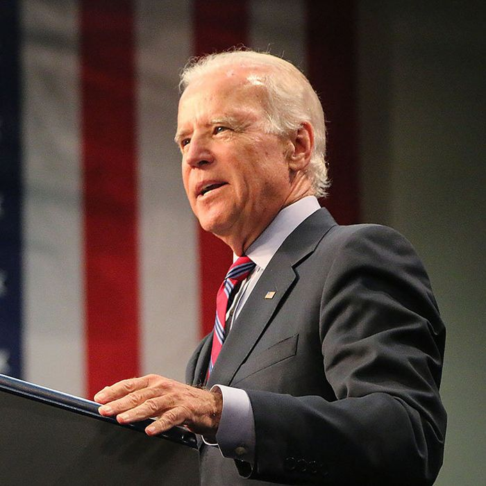 Vice President Joe Biden speaks to supporters at a Democratic Rally held in the JH Adams Gymnasium on Allen University's campus in Columbia, S.C.