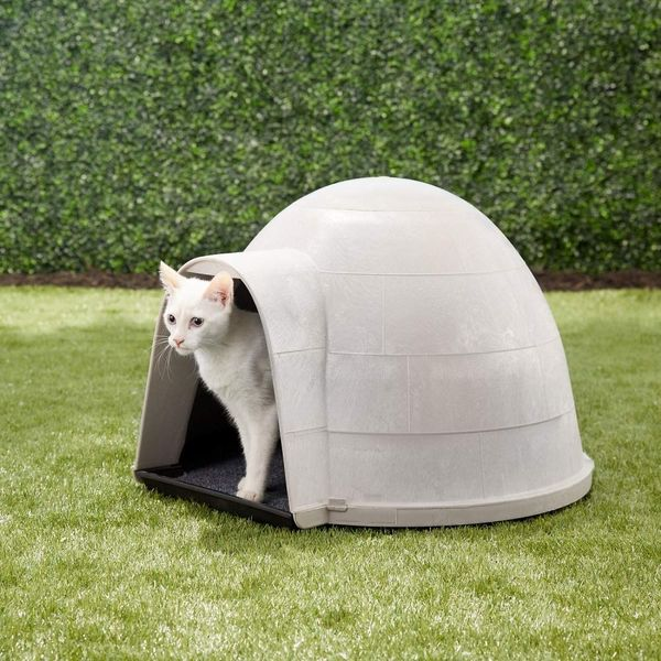 15 Best Cat Houses And Condos 2019 The Strategist New York Magazine