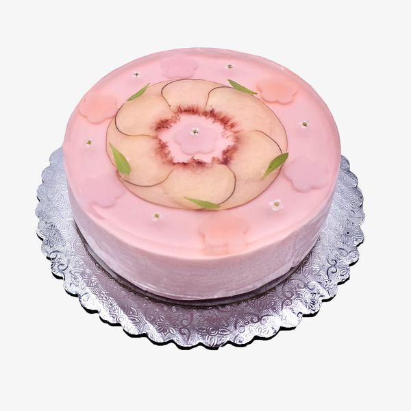 Eat Nunchi Cheesecake