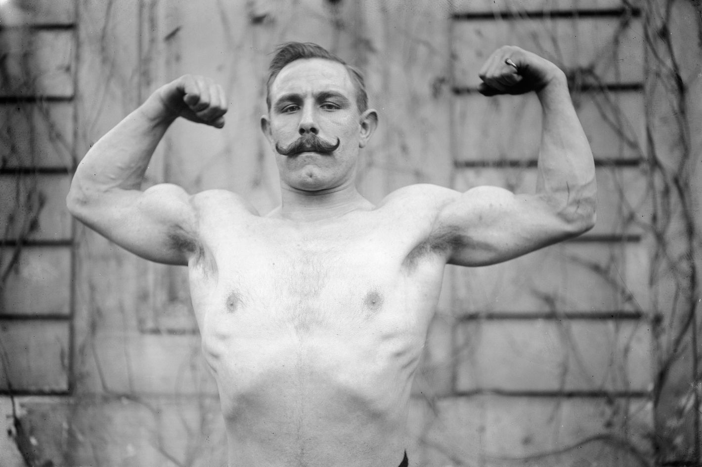 Lievs virile comeback with muscular lane
