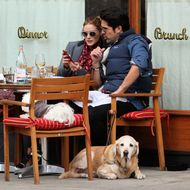 The City Might Obstruct New Law Allowing Dogs on Restaurant Patios