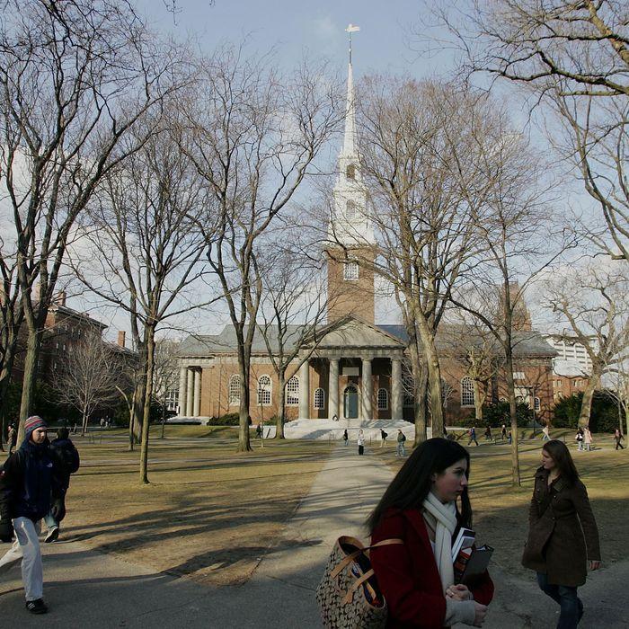Harvard University walk through the campus.