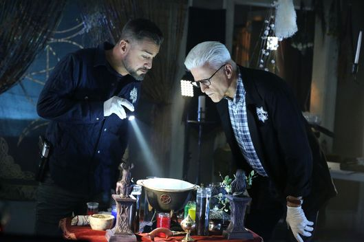 "The Book of Shadows"" -- Nick Stokes (George Eads, left) and D.B. Russell (Ted Danson) search the home of chemistry teacher Chet Messner and develop more questions as to why Messner\'s science experiment went horribly wrong, on CSI: CRIME SCENE INVESTIGATION, Sunday, Oct. 19 (10:00-11:00 PM, ET/PT) on the CBS Television Network.  Photo: Michael Yarish/CBS ?'??2014 CBS Broadcasting, Inc. All Rights Reserved"