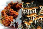Sticky's Finger Joint Waitress Says Owner Fed Her Magic Mushrooms