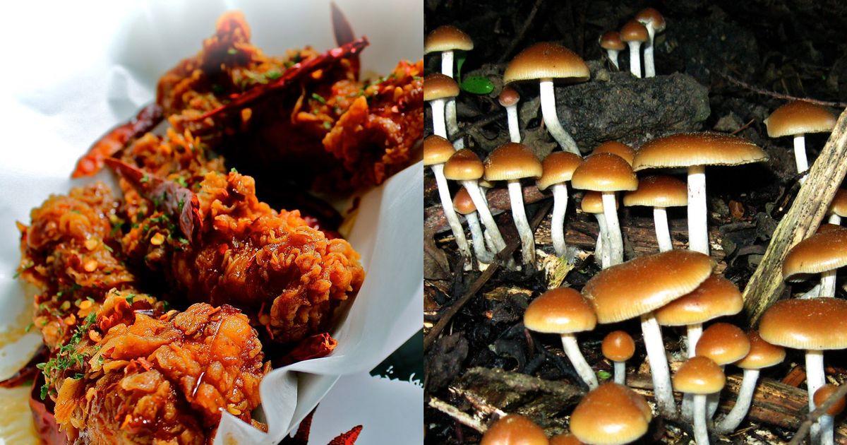 Sticky's Finger Joint Waitress Says Owner Fed Her Magic Mushrooms