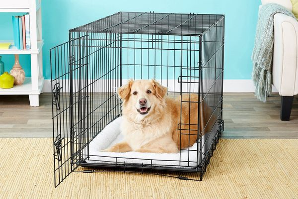 Frisco Fold & Carry Single Door Dog Crate (36-Inch)