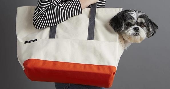 Furends Personalized 2 Pet Tote Bag