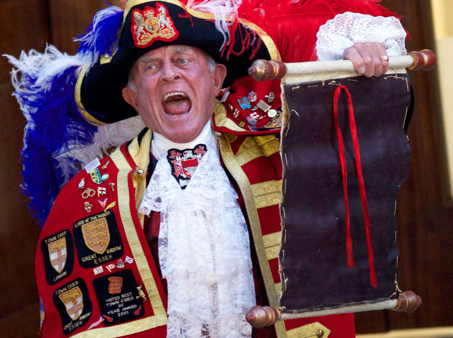 Image result for town crier