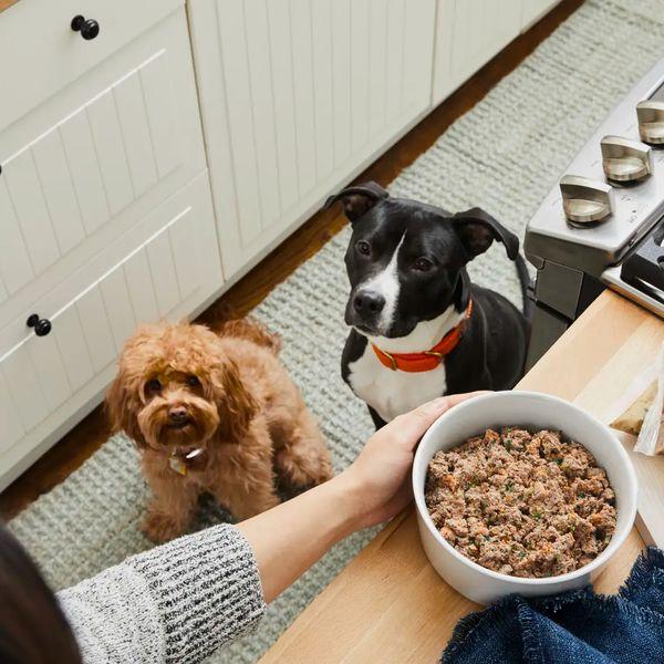 The Farmer's Dog Subscription Dog Food