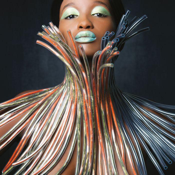 Silvia Beccaria, <i>Mal d'Africa</i>.
