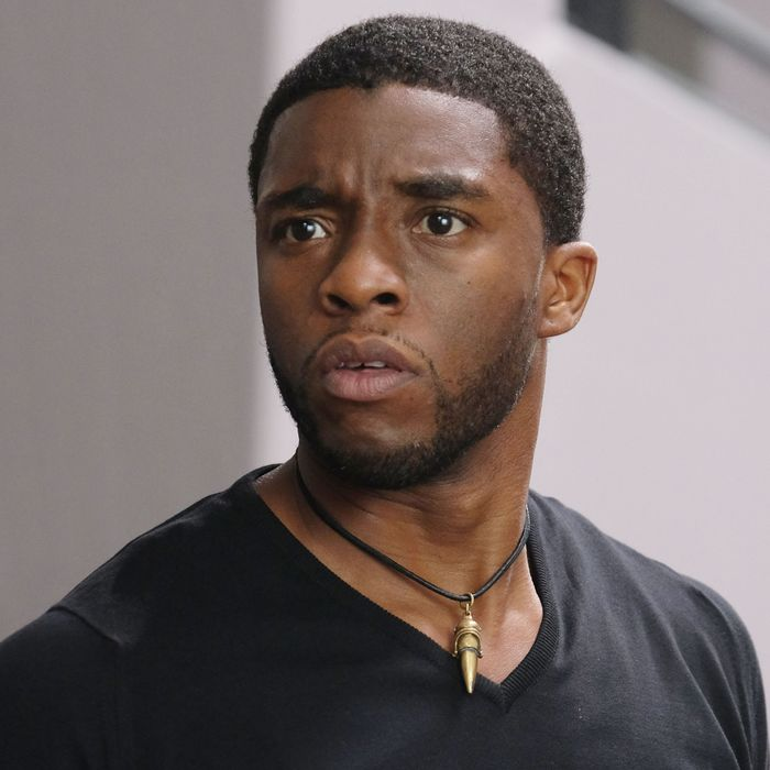 What You Need to Know Before Seeing T'challa from Black Panther