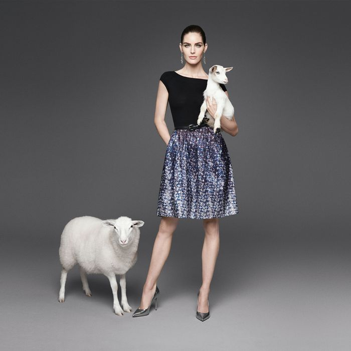 An image from Dressbarn's campaign.
